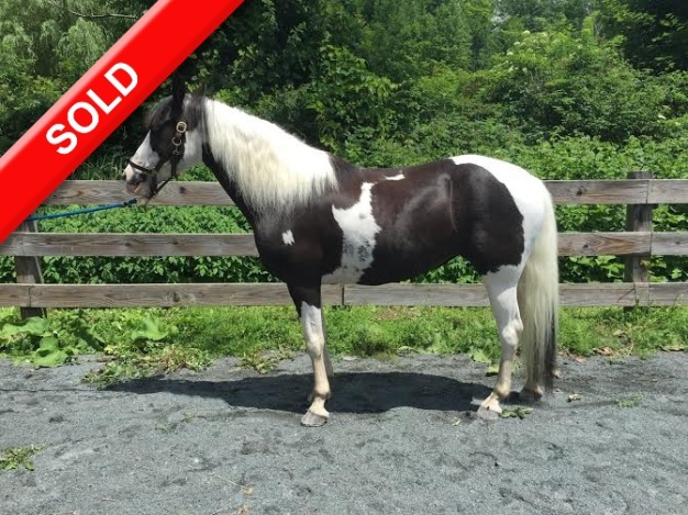 Oreo Sold
