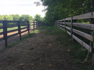 Paddock Path